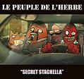 Le Peuple de l'Herbe – Secret Stachella