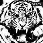 Darcy – Tigre