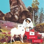 Joy as a Toy – Mourning Mountains