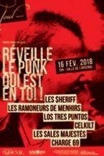 Réveille Le Punk Qui Est En Toi vignette